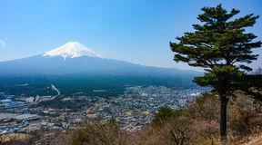 paesaggio-del-vulcano-del-monte-fuji-e-di-un-pino-solo-nel-giappone-92589260