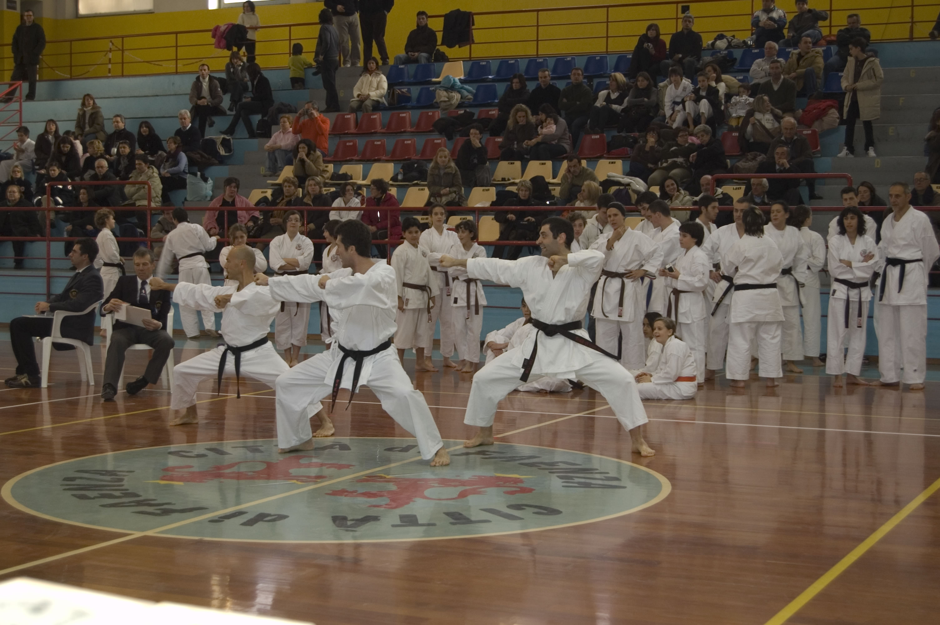 faenza2007(7)